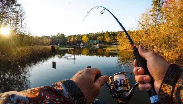 видео рыбалка в плавнях кубани